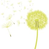 Carte Cadeau «Ma pause bien-être»